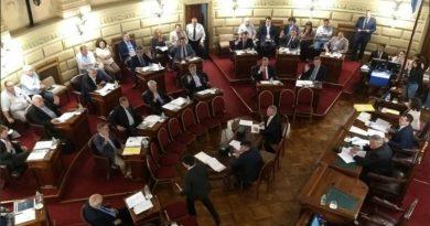 Háblame de lealtad: Seis senadores peronistas votaron en contra de Perotti el presupuesto 2020.