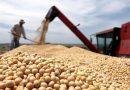 Recibidores de granos denuncian irregularidades en la cadena de comercialización que afecta a los trabajadores