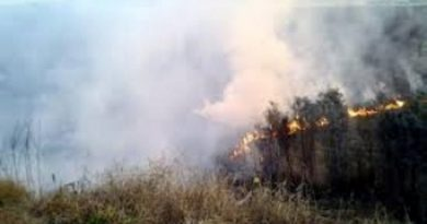 """""""No es fácil controlar el fuego con gente a la que no le importa nada"""", dijo Gasparutti."""