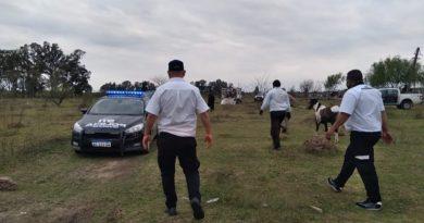 Cinchadas en Rosario: detuvieron a 13 personas en la zona noroeste