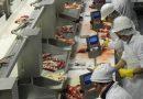 Carne: China detecta rastros sospechosos de coronavirus en otro cargamento llegado de la Argentina