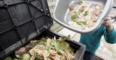 Casi un 20% de los alimentos se desperdician en el mundo cada año