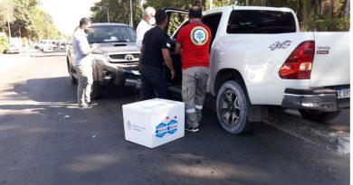 El ministro de Salud correntino se descompensó y chocó: llevaba vacunas contra el coronavirus en el baúl de su auto