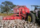 Santa Fe duplicará los recursos que recibe del Fondo Algodonero Nacional