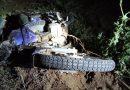 Un motociclista debió ser rescatado de un zanjón en Funes
