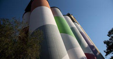 El Museo Castagnino+macro invita a recorrer sus muestras este fin de semana