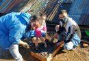 Vecinos de Nuevo Alberdi construyeron ladrillos de adobe para estufas eficientes