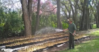 Santa Fe fortalece el vivero provincial Santa Felicia